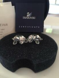 Swarovski Crystal Baby Turtle Duo. Perfect condition. With certificate.