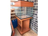 Fish tank 40-50litres approx