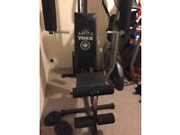 Multi Gym York weights bench