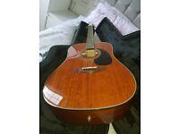 Farida Guitar & Case