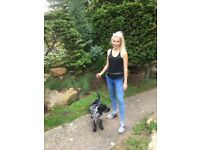 Professional, Reliable & Fully Insured Dog walkers / Dog runners / Pet Sitters