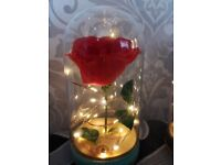 Beauty and the beast style dome with rose and lights