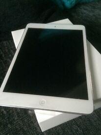 iPad mini 2 with wifi/bluetooth 16gb