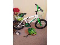 Boys dinosaur bike bicycle