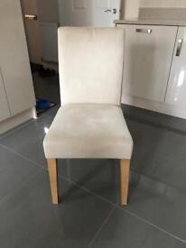 NEXT Moda Dining Chairs