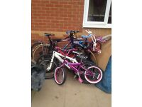 Job lot off bikes £50
