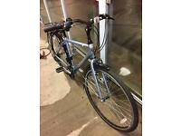 Men's Dewes Mojave bike