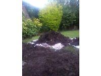 4 Large piles of soil - FREE