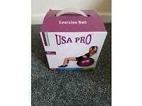 Large Pregnancy/Exercise Ball
