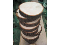 CRAFT WOOD SLICES - cut tree trunk slices all sizes for gardens, crafts, coasters, decorations