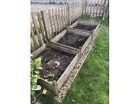 3 1m square raised vegetable/flower beds