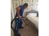 Professional Carpet & Window Cleaning