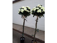 2x fake rose bushes in tubs with lights and batteries.