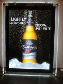 Large pub/bar lightbox with budweiser poster
