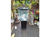 Hexagon mirror backed fish tank and stand