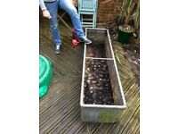 Metal troughs/planters