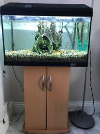 Aquarium - Fish Tank Complete Set Up