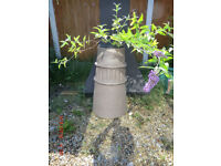 Chimney Pots for plants