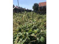 Gardening & landscaping Liverpool