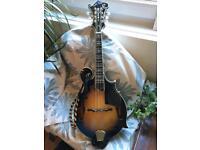 Goldtone GM70+ mandolin