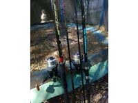 Two carp fishing rods and reels