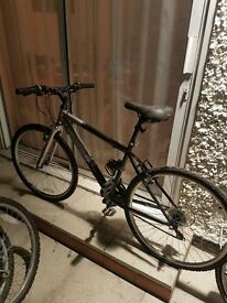 Bike for sale - Female Apollo Midnight