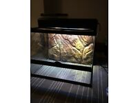 Exo terra vivarium with a double top light canopy cost over £200