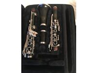 Amati Kraslice 313, Professional Clarinet Wood
