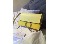 Stunning Chloe Faye bag