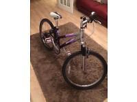 Kids Raleigh diva bike