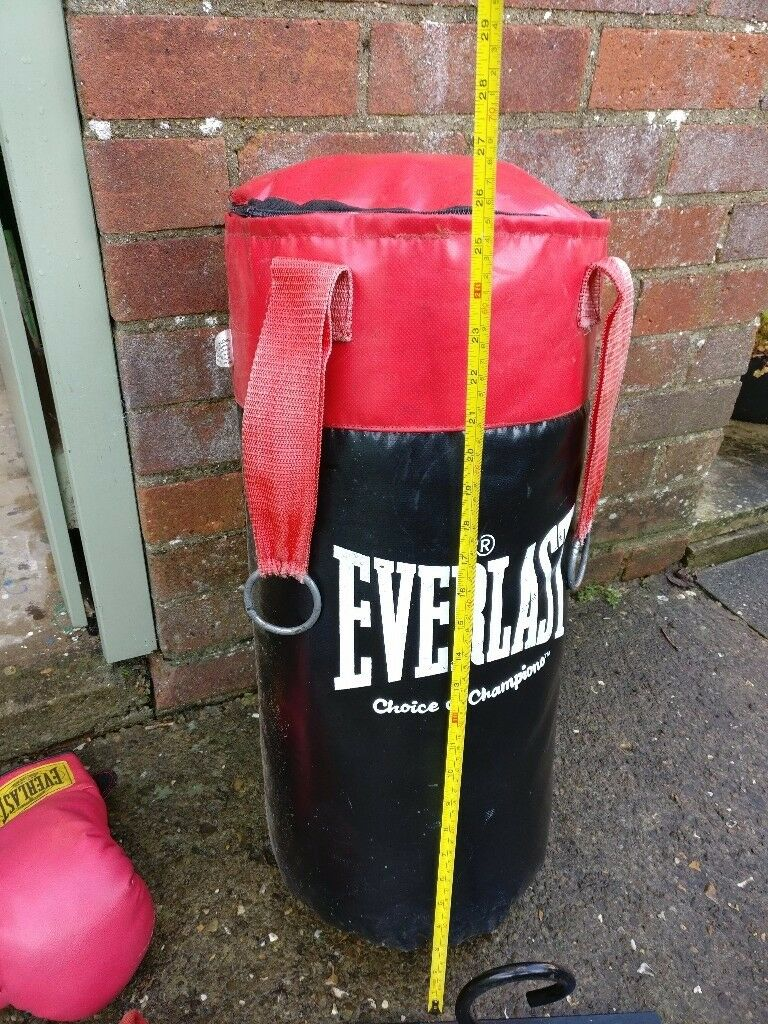 Everlast 2ft boxing punch bag and gloves set.