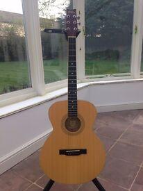 Washburn F8 Acoustic Guitar + Ritter Gigbag
