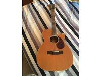 12 String Hudson Electric-Acoustic guitar