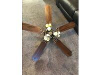 Set of 2 fan ceiling lights