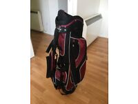 Williams Golf Stand Bag with 8-way top divider, 6 pockets, dual straps and automatic stand.
