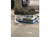 Free Garden Turf 20m2