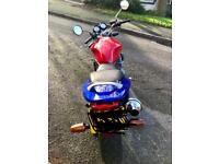 Honda hornet!!! Great first bike!!! Low milage