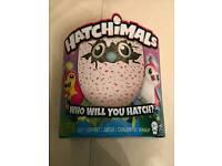 Pengualas Pink Hatchimal