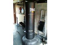 Everlast Pro Everflex Freestanding Punchbag