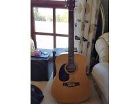 Blue Moon GR 5209L Acoustic Guitar