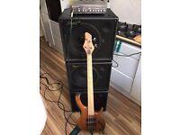 Bergantino AE112 bass cabinets