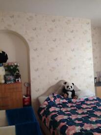 NEW BEAUTIFUL 1 DOUBLE BEDROOM TO LET, ALL BILLS INCLUDED , IN CITY CENTRE 5 MINS WALK UNIVERSITY :