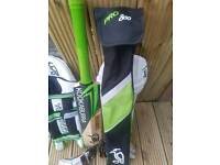 Cricket bat pads and gloves