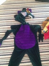 Fab Dragon dressing up costume