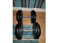 Pro style dumbbells 2×25kg