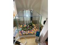 Ciano Nexus 22 Litres Tank Aquarium with filter, heater and accessories
