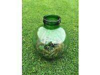 Garden glass flower planter
