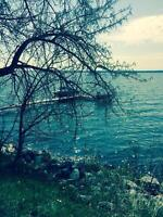 Pigeon lake front Golden Days beach (bring offers)