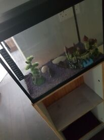 Fish tank and stand comes with acsesoreys no pump