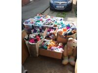 Biggest collection of beanie babies in whole world